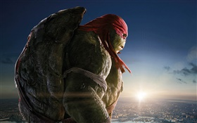 Teenage Mutant Ninja Turtles, Raph HD Papéis de Parede