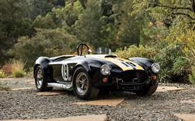 1965 Ford Shelby Cobra 427 carro retro